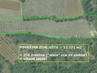 Image for Vodnjan - Juršići