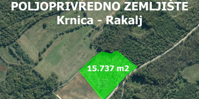 Image for Krnica